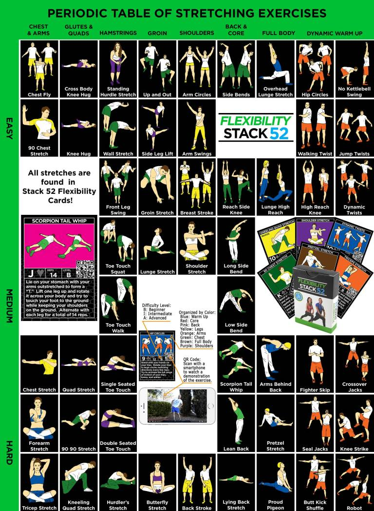 A Periodic Table Of Stretching Exercises Lost In Mobile