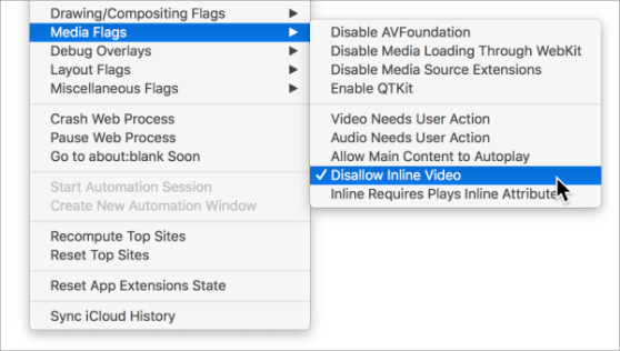 Stop Auto-Play Videos from Annoying You On A Mac – Lost In