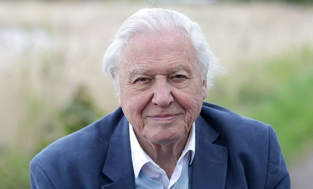 David_Attenborough_reveals_how_Wimbledon_helped_Britain_beat_the_Germans_to_colour_TV