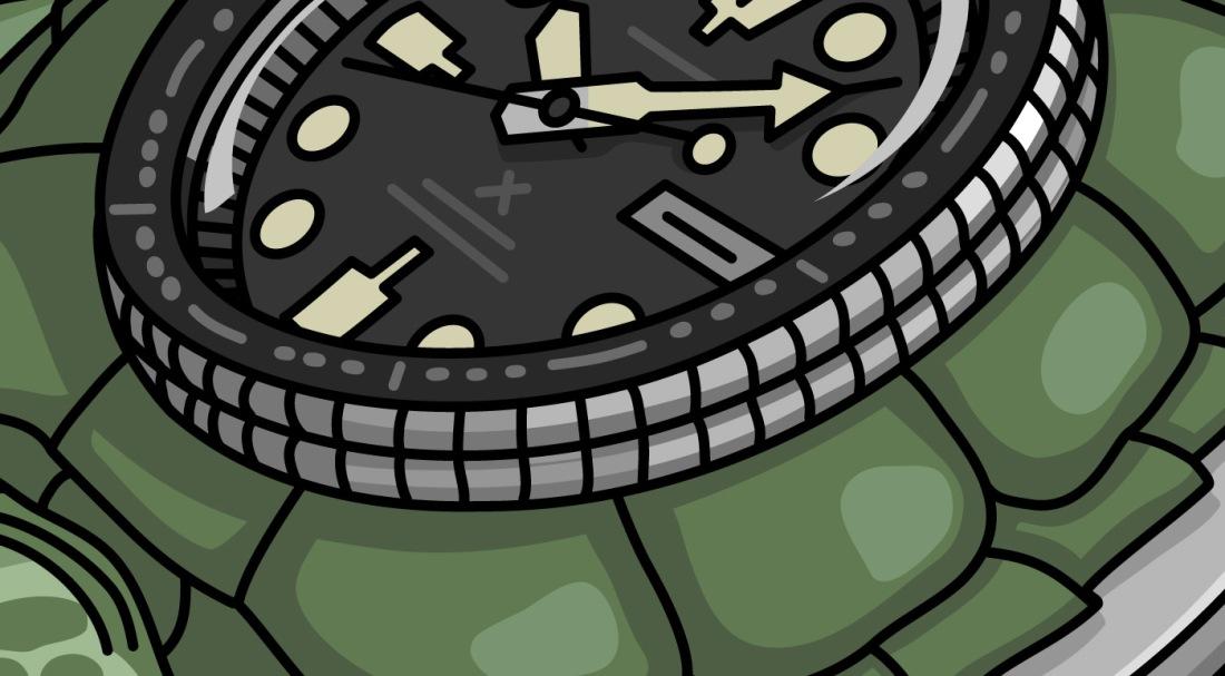 2017-07-17_Seiko-Turtle-website-featured